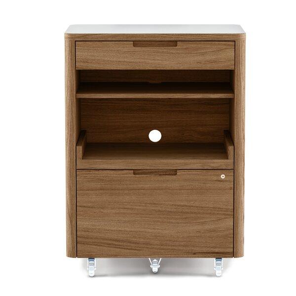 Kronos Mobile Filing Cabinet
