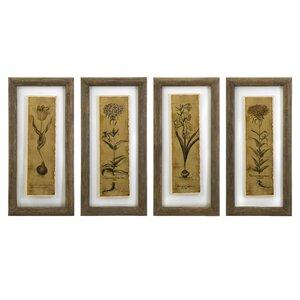 Blossom Sketch Framed Prints (Set of 4) by Birch Lane™