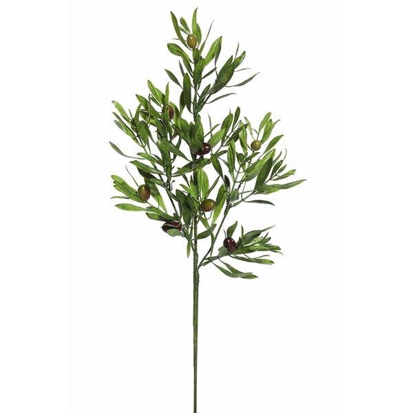 Olive Leaf Spray Fruit Tree by Three Posts