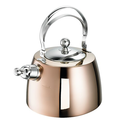 Zora 2L Stainless Steel Whistling Stovetop Kettle Schulte Uf
