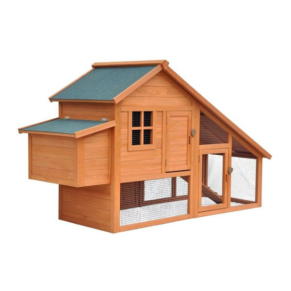 Philomena Habitat Chicken Coop with Nesting Box by August Grove