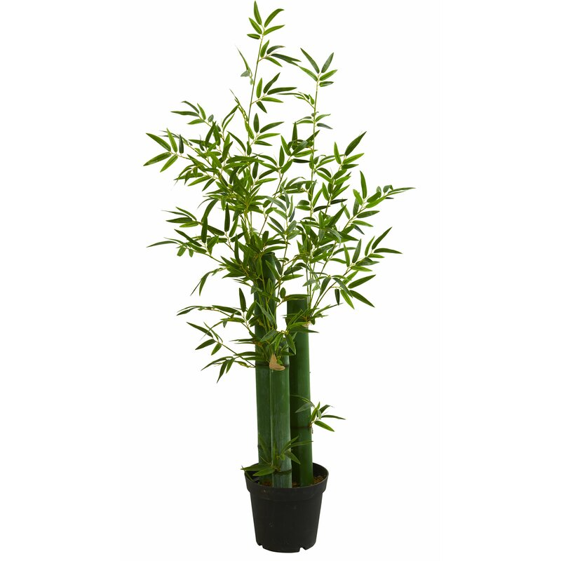 World Menagerie 51 5 Artificial Bamboo Tree In Planter Wayfair