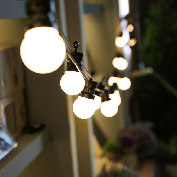Ewert Globular LED 24 Light String Light by Breakwater Bay