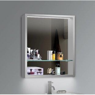 Chenery 24 x 30 Recessed or Surface Mount Framed Medicine Cabinet with 2 Adjustable Shelves and LED Lighting ByOrren Ellis