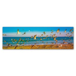 'Florida Beach Birds' by Preston Photographic Print on Wrapped Canvas by Trademark Fine Art