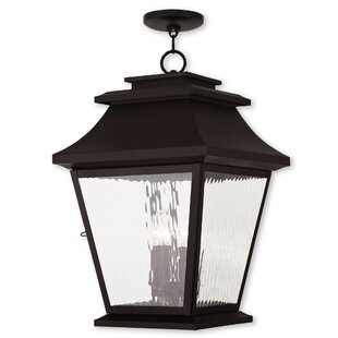 Best Campfield 4-Light Outdoor Hanging Lantern By Darby Home Co