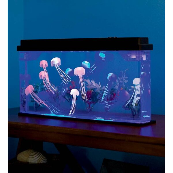 Hyslop 1.8 Gallon Jellyfish Aquarium Kit by Tucker Murphy Pet