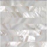 "2"" x 2"" Natural Shell Bullnose Decoratiive Tile Insert in White (Set of 36)"