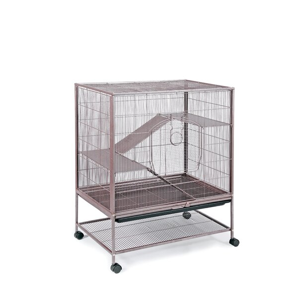 Small Animal Cage by Prevue Hendryx