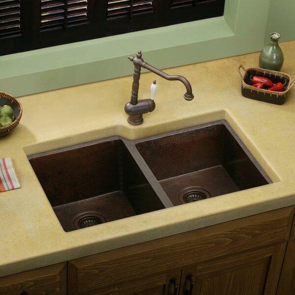 31 L x 21 W Double Basin Undermount Kitchen Sink by Elkay