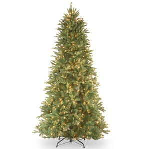tiffany fir 75 green slim artificial christmas tree with 600 pre lit clear lights - Artificial Christmas Trees Sale