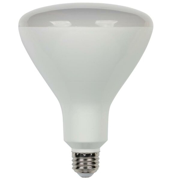 Frosted E26/Medium LED Light Bulb by Westinghouse Lighting