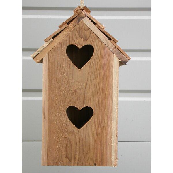 Condo 14 in x 6 in x 6 in Birdhouse by Cedarnest