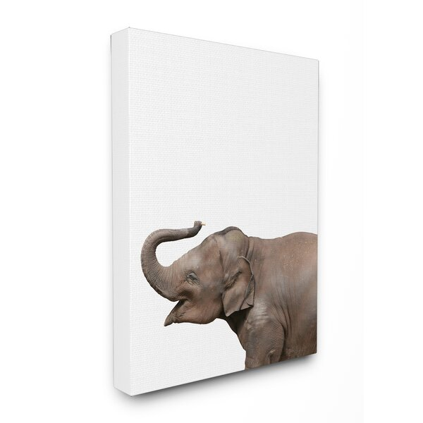 Baby Elephant Studio Photo Stretched Canvas Art by Stupell Industries