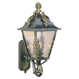 Petrey 3-Light Outdoor Sconce By Alcott Hill Outdoor Lighting
