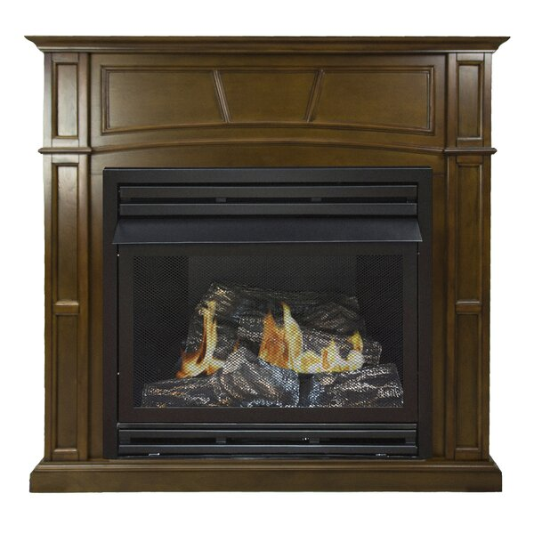 Shawnta Natural Gas Fireplace by Darby Home Co