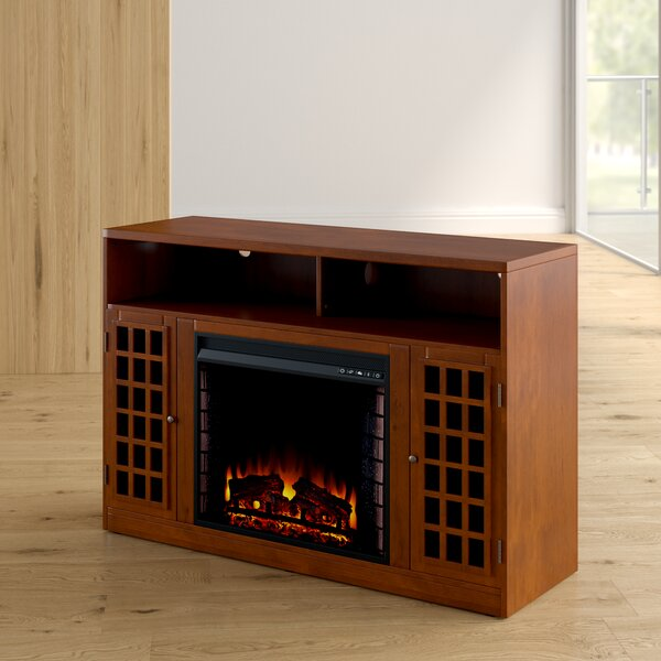 Hawley 48 TV Stand with Fireplace by Latitude Run