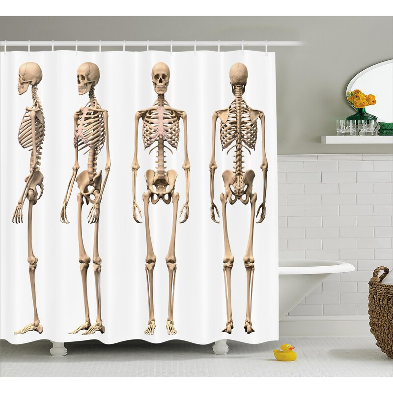 Human Anatomy Man Male Skeleton Skull Different Perspectives Medical Humor Illustration Shower Curtain