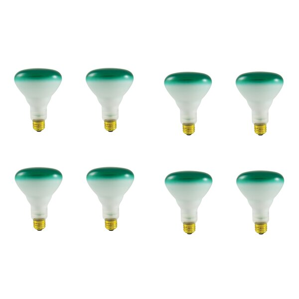 75W E26 Dimmable Incandescent Light Bulb (Set of 8) by Bulbrite Industries