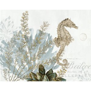 'Natural Seahorse' by Stacey Powell Graphic Art on Wrapped Canvas by Buy Art For Less