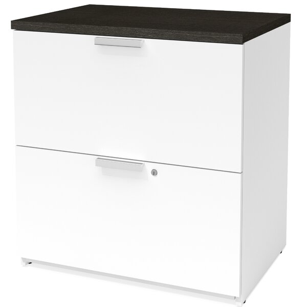 Hartleton 2-Drawer Lateral Filing Cabinet by Latitude Run