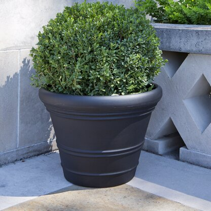 Marquis Plastic Pot Planter by Veradek