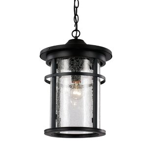 Searching for Ilene 1-Light Outdoor Hanging Lantern By Latitude Run