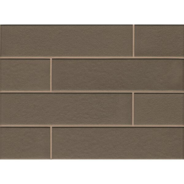 Remy Glass 4 x 16 Mosaic Gloss Mesh Mount Tile in Taupe by Grayson Martin