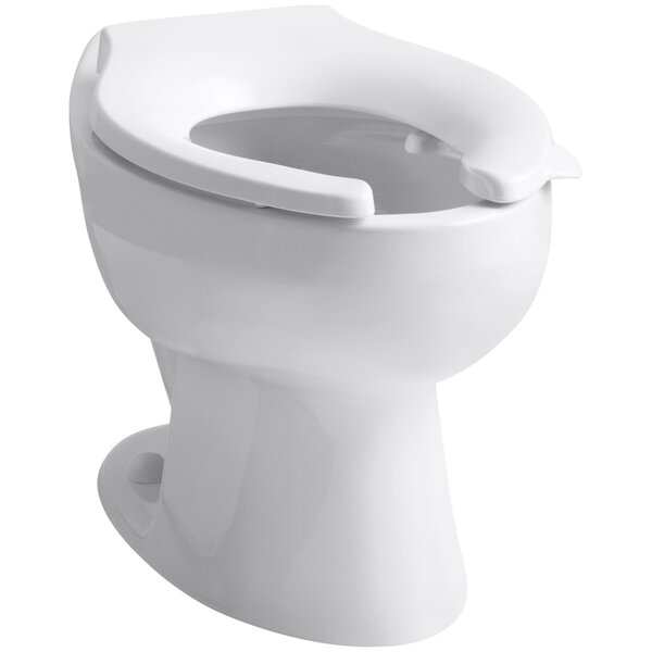 Wellcomme 1.6 GPF Flushometer Valve Elongated Toilet Bowl with Rear Inlet and Bedpan Lugs, Requires Sea by Kohler