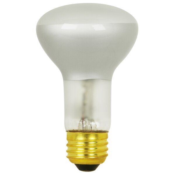 120-Volt Halogen Light Bulb by FeitElectric