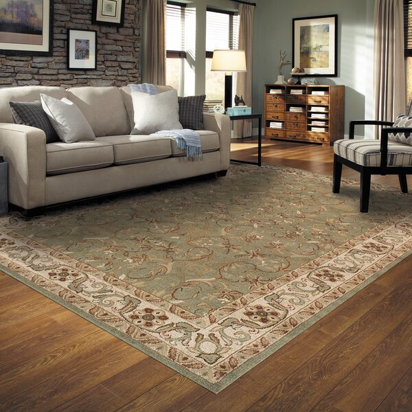 Destin Green Area Rug by Astoria Grand
