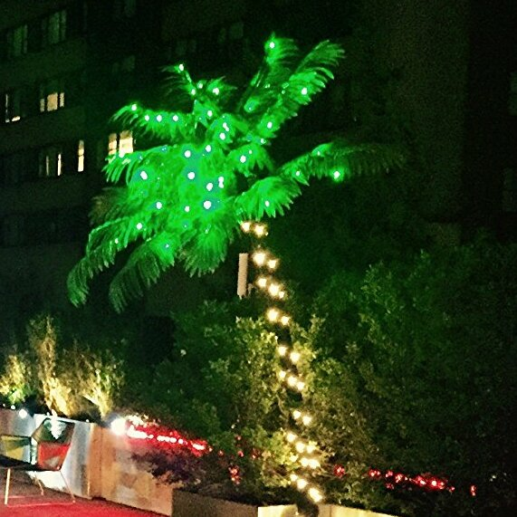 Pre-Lit LED 56 Light Palm Tree by Lightshare