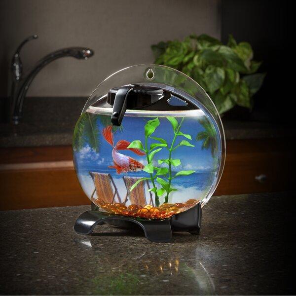 Nashville 0.5 Gallon Betta Bubble Aquarium Kit by Tucker Murphy Pet
