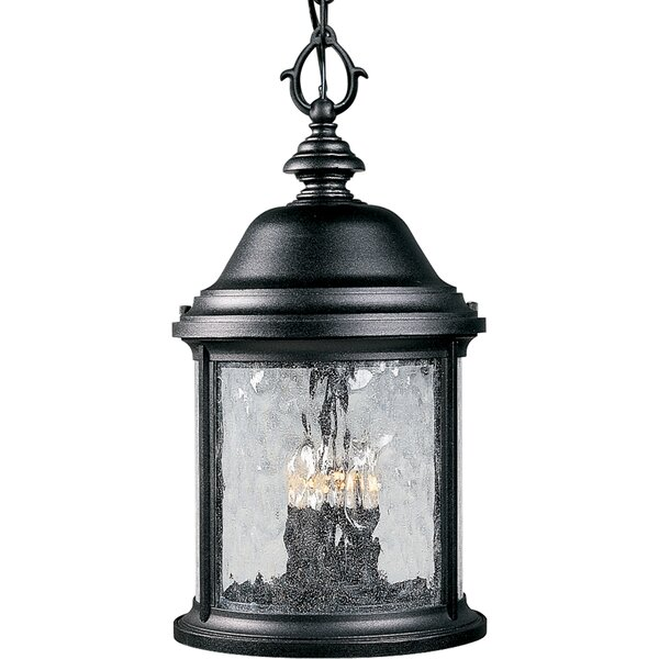 Drumakeely 3-Light Outdoor Hanging Lantern by Alcott Hill
