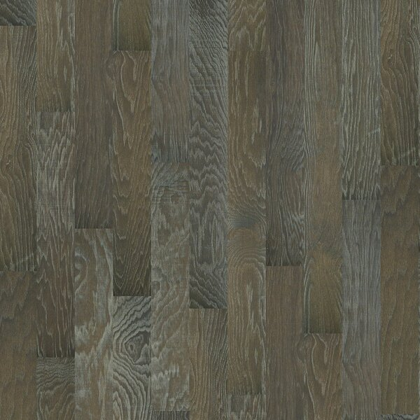 Chic Hickory 4.8 Engineered Hardwood Flooring in Stately by Shaw Floors