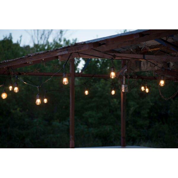 Suspended Commercial Grade 24 Light Globe String Light by Aspen Brands