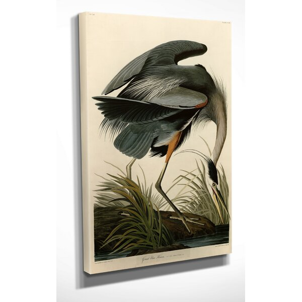 Great Blue Heron by John Audubon Graphic Art on Wrapped Canvas by Wexford Home