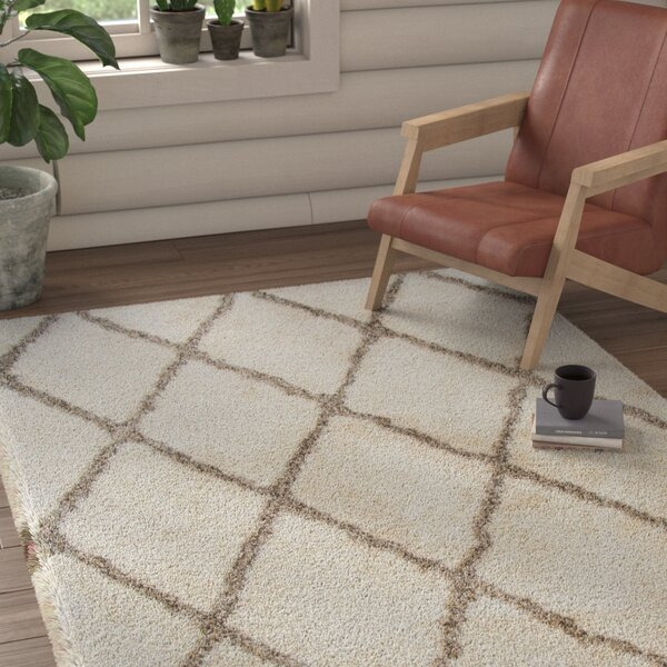 Mathena Shag Hand-Woven Ivory Area Rug by Union Rustic
