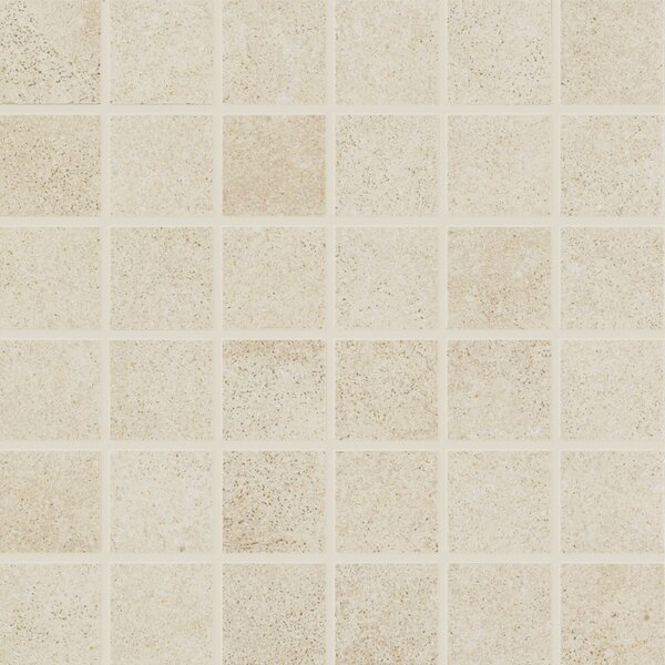Central Station 6 x 6 Porcelain Field Tile in Champagne by PIXL