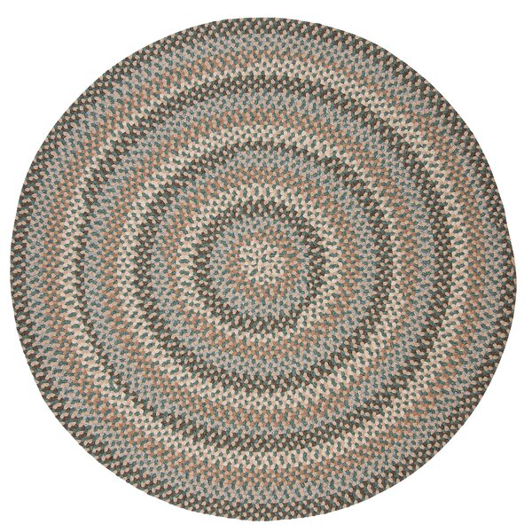 Lettie Driftwood Teal Area Rug by Alcott Hill