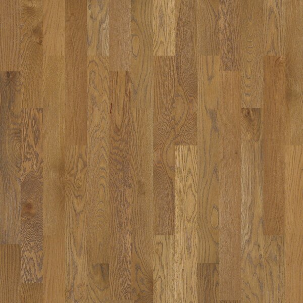 Nalcrest 4 Solid White Oak Hardwood Flooring in Waverly by Shaw Floors