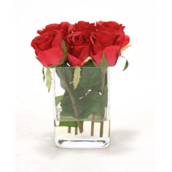 Waterlook 6 Roses Floral Arrangements in Glass Vase by Distinctive Designs