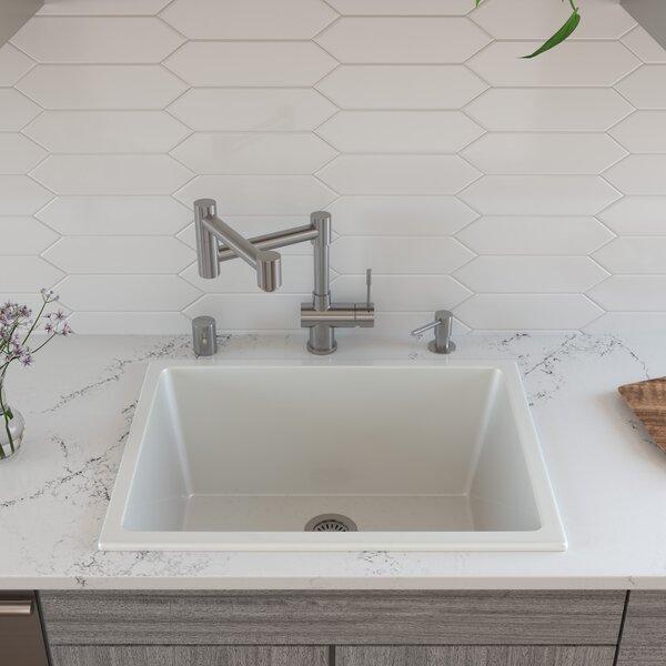24 L x 10 W Undermount Kitchen Sink