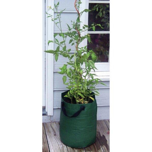 Patio Tomato Plastic Pot Planter by Bosmere