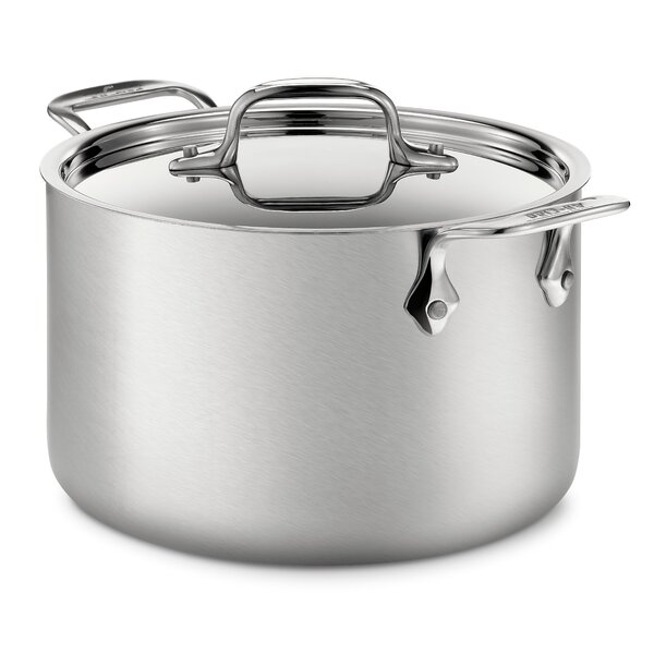 d5 Brushed Stainless Steel 128 Oz. Soup Pot with Lid by All-Clad