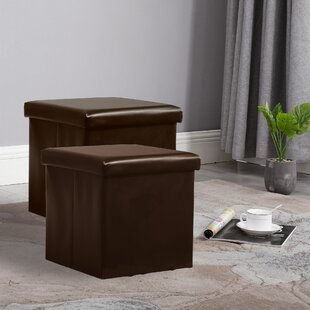 Bejarano Foldable Storage Ottoman (Set of 2)