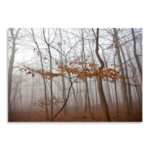 'Lonely Tree' Photographic Print by East Urban Home