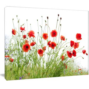 'Poppies on White Background' Photographic Print on Wrapped Canvas by Design Art