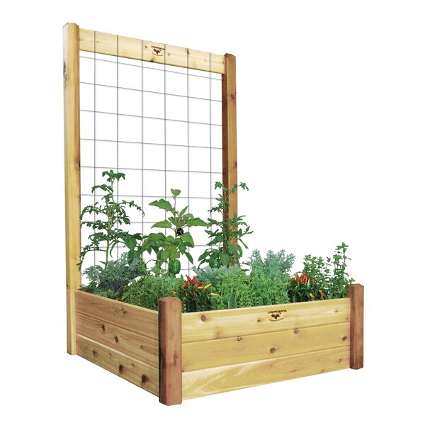 Wood Raised Garden with Trellis by Gronomics