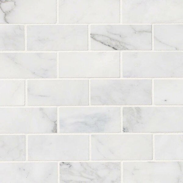 Calacatta Cressa Honed 2 x 4 Marble Subway Tile in White by MSI